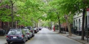 home_urban_tree_canopy