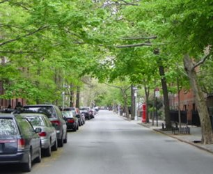 home_urban_tree_canopy