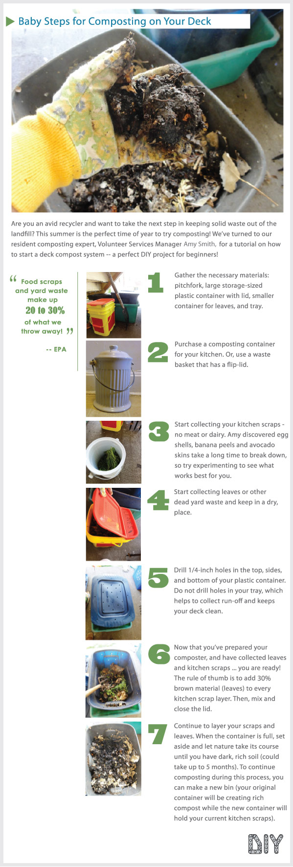 Baby Steps for Composting