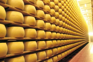 Room full of cheese (Photo source: profikaneten.hu)
